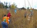 Elmhurst Prairie Work Day